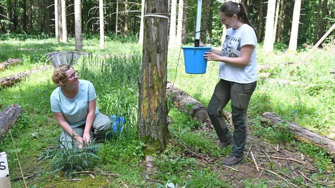 Biodiversitäts-Exploratorien in der Südwest Presse