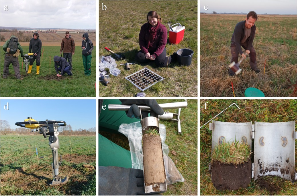 Collage showing photos of the field work of the Resoilience project: students assisting, research assistant Katharina John, research assistant Dennis Baulechner, spreading fertilizer, artificial soil compaction by means of a vibratory tamper, taking soil samples